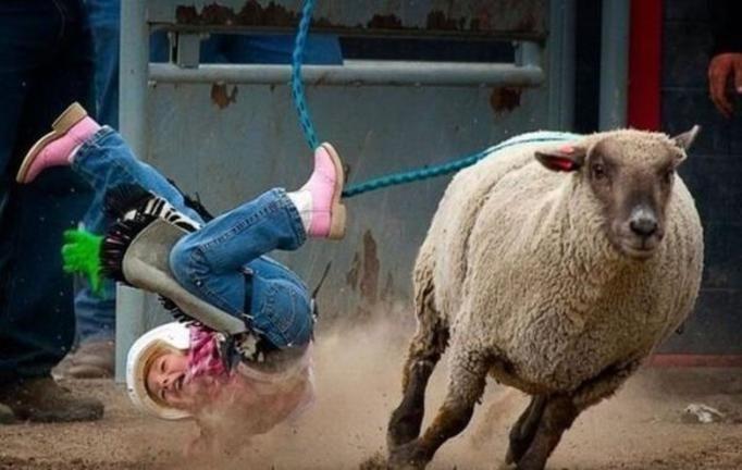 rodeo denver