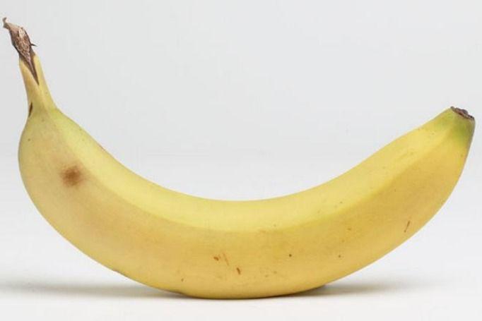 jak wygląda penis
