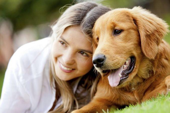 czym weganie karmią psy