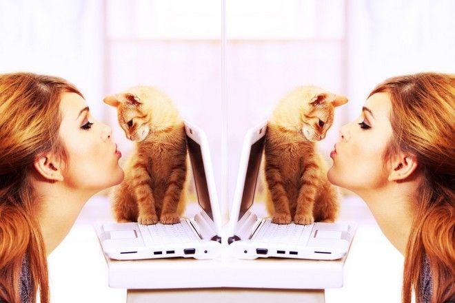 musi kochać koty serwis randkowy Christian Interracial randki