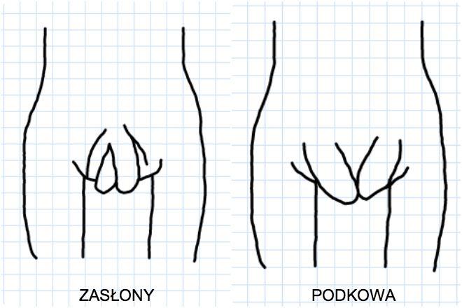 kształt warg sromowych
