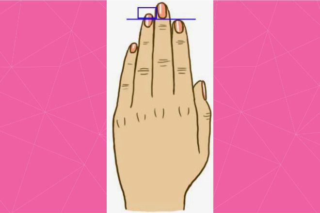 długość palców