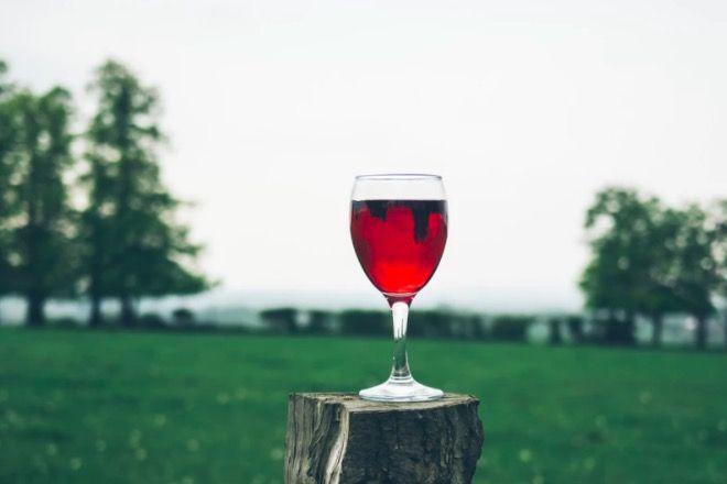 czerwone wino a zęby